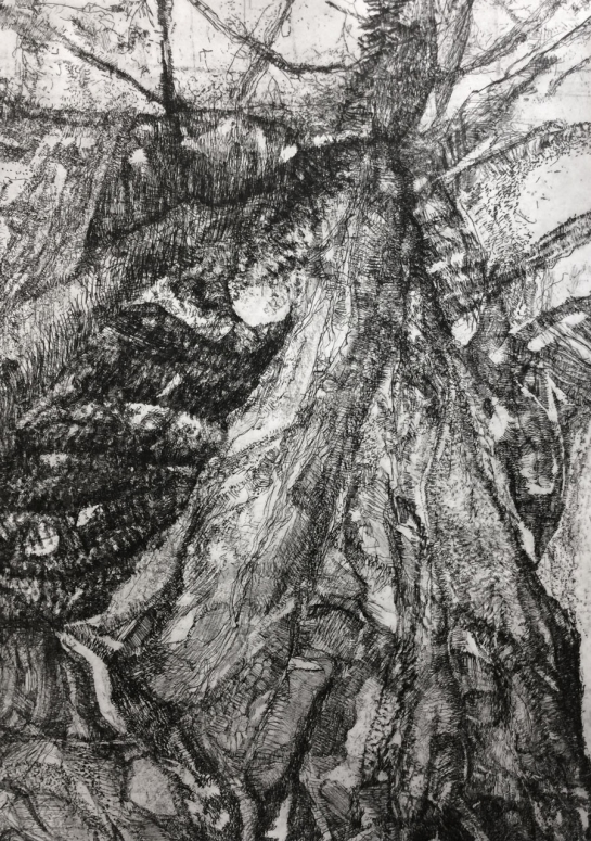 east-london-printmakers-irenebadia-bark1