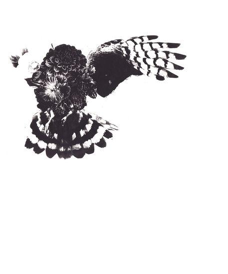 flower-bird-1